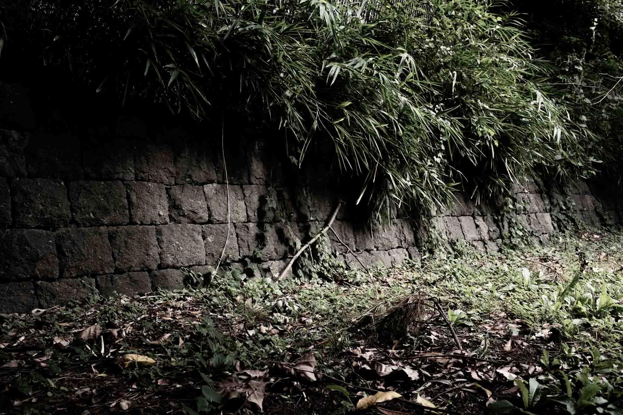 都立光が丘公園の石垣